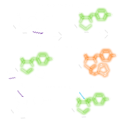 Single Molecule Localization Microscope